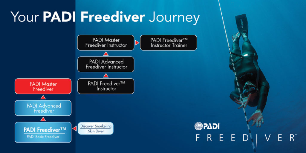 Freediving Moalboal The Blue Orchid Resort Moalboal