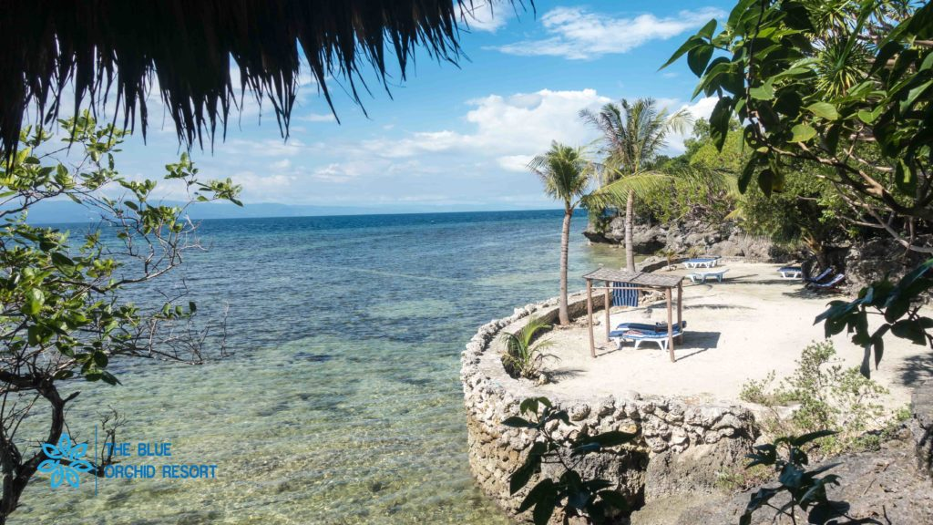 Blue Orchid Resort, Moalboal Beach